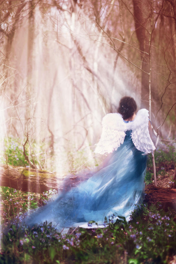 The Angel in the Woods by waiting4cadence