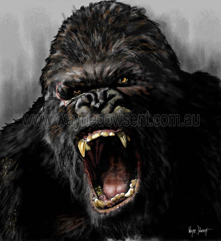 king kong face drawing images galleries with a bite. Black Bedroom Furniture Sets. Home Design Ideas