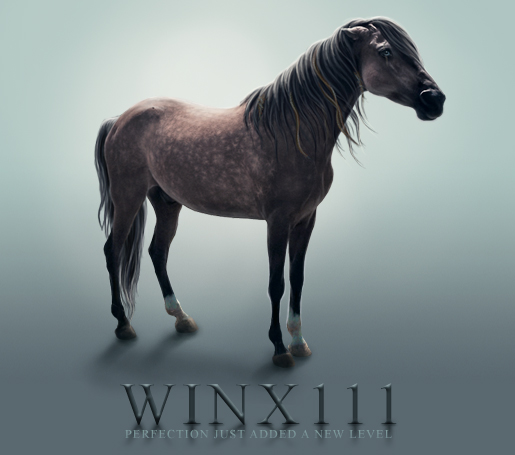 winx111's Profile Picture