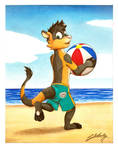 Xiam ferret at the beach! (For Warden)