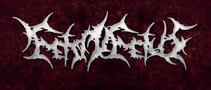Feto In Fetus logo