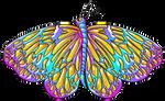Mariposa-16.2