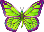 Mariposa-22.1