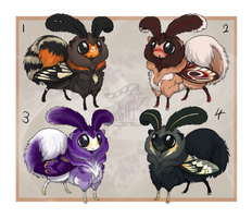 Mottipups Batch II [Auction: Closed] by ResidualAdopts