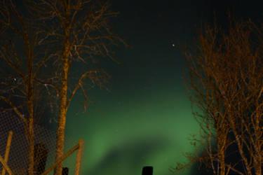 Aurora Borealis - Bodo, Nordland, Norway - by FiXato