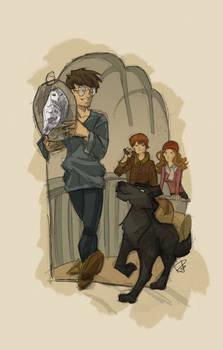 Harry's travel