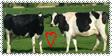 I luv cows Stamp by vampyrekittyomega