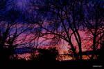 Sun set stock-background