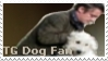 Top Gear Dog Stamp by Anime-Reality