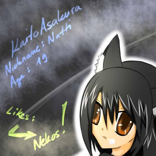 KaitoAsakura's Profile Picture