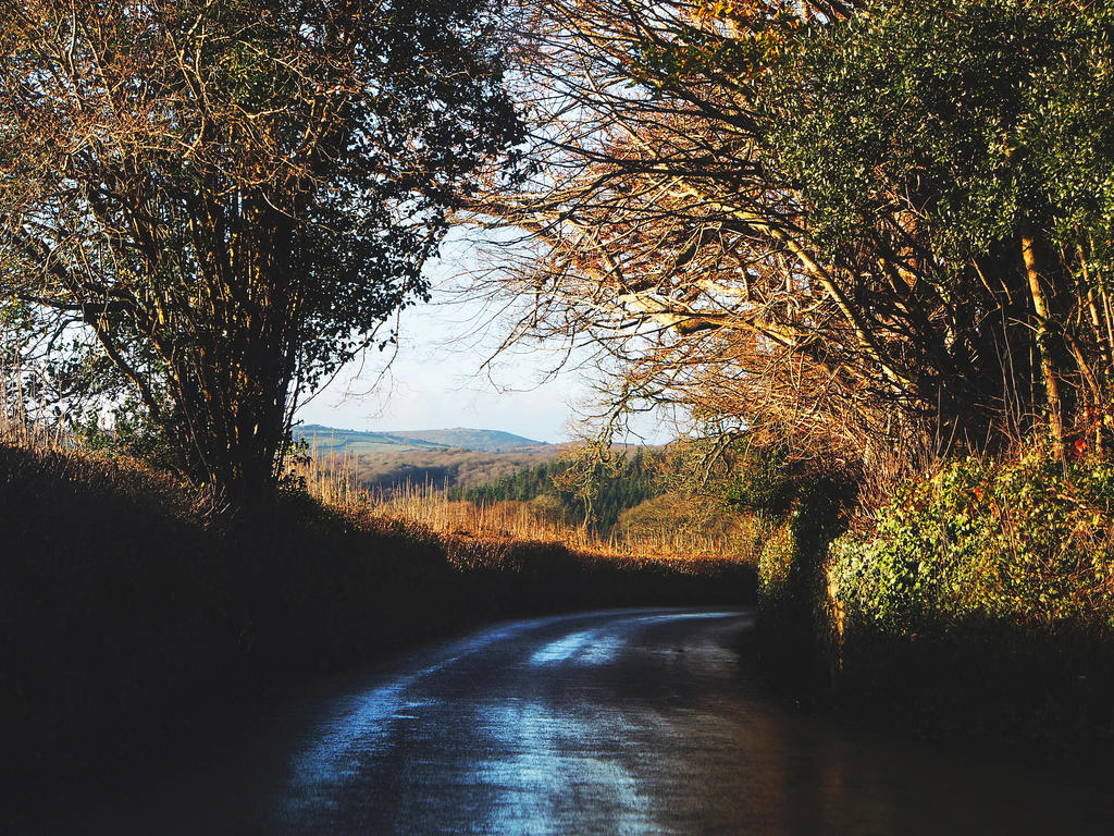 Devon by CarisaLaine