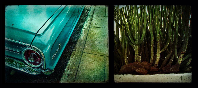 No Tequila Last night by cameraflou