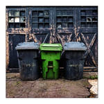 Green Intruder by cameraflou