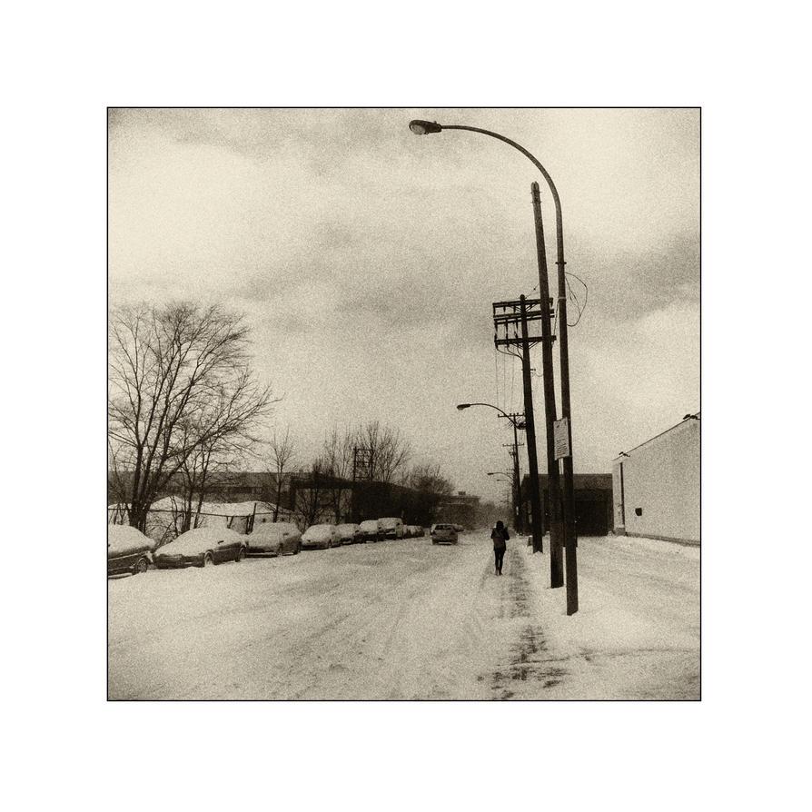 Snow XV by cameraflou