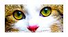 [Stamp] Green Cat Eyes 1