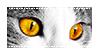 [Stamp] Amber Cat Eyes