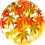 [Circle] Autumn Leaves by AestheticallyLithi