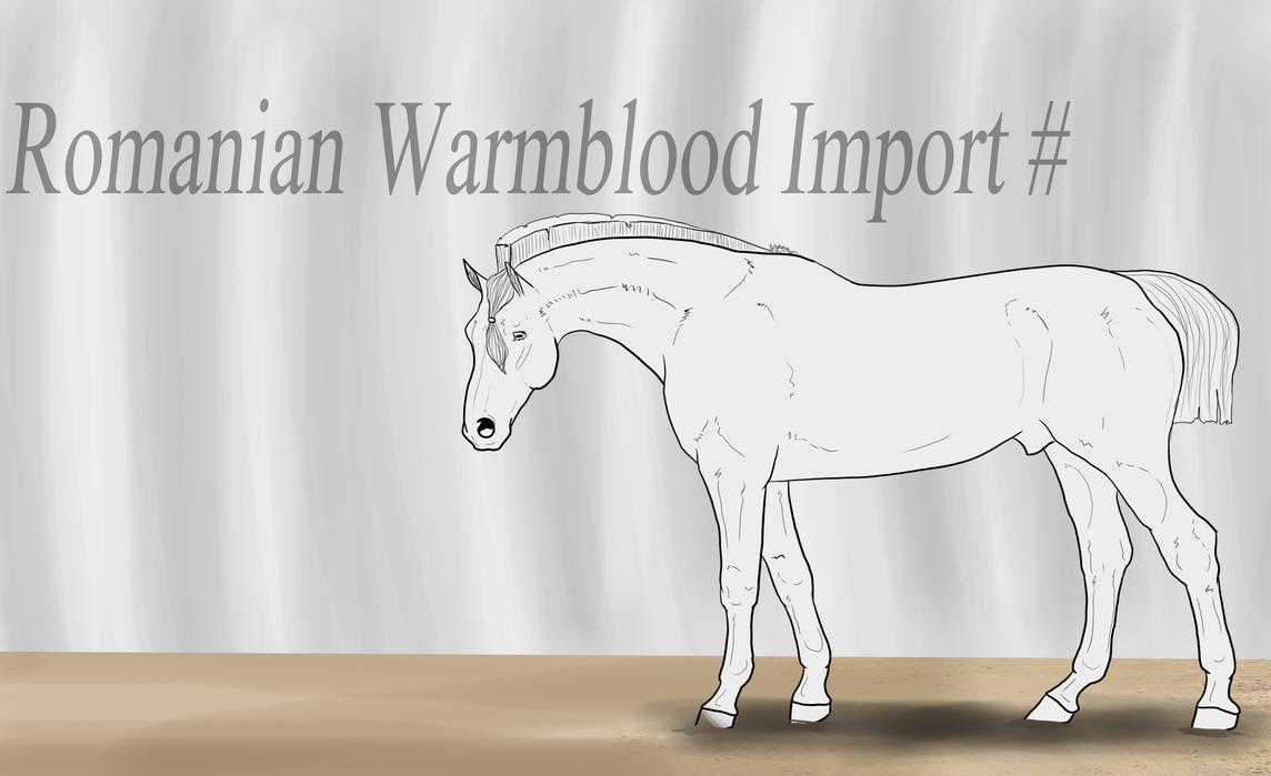 The Romanian Warmblood - RWB by Horse-Emotion