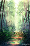 Forest Practice