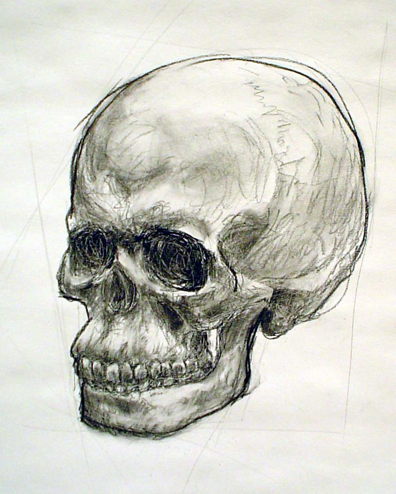 Skull drawing by Skeletina