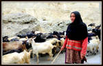 The good  shepherd by YannosGATO