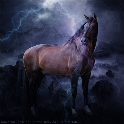 HEE Avatar - Immortally Bound In Blood by Art-Equine