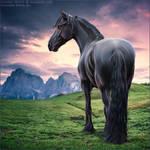 HEE Horse Avatar - Brighid