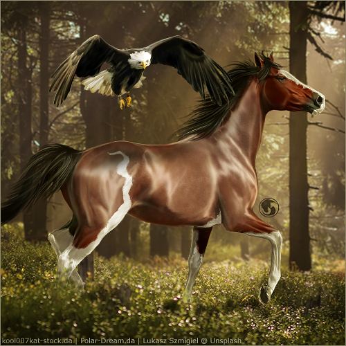 HEE Horse Avatar - Sitka by art-equine