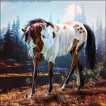 HEE Horse Avatar - The Huntress