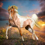 HEE Horse Avatar - Bewildered Fantasy