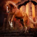 HEE Horse Avatar - Athena
