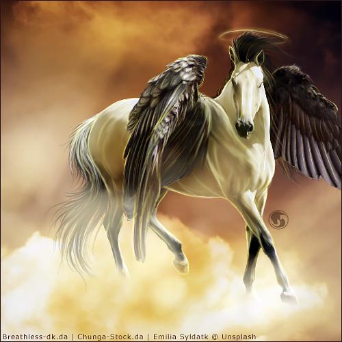 HEE Horse Avatar - Saving Grace