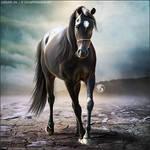 HEE Horse Avatar - Ghalib