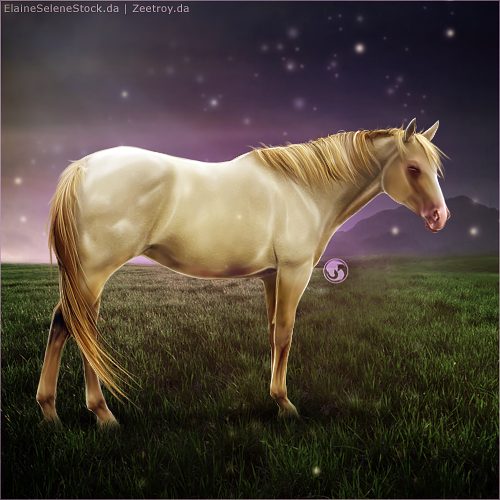 HEE Horse Avatar - Lullaby by art-equine