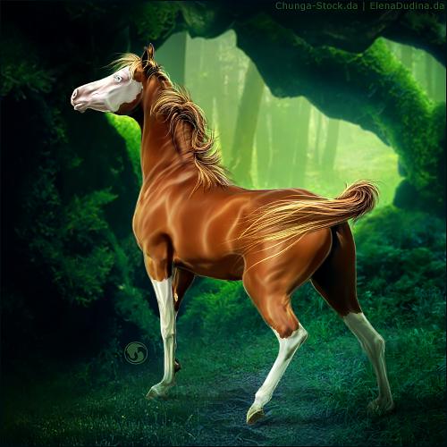 HEE Horse Avatar - Wildman by art-equine