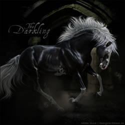 HEE Horse Avatar - The Darkling by VIXEN-STUDIO