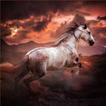 HEE Horse Avatar: Venomous Vixen