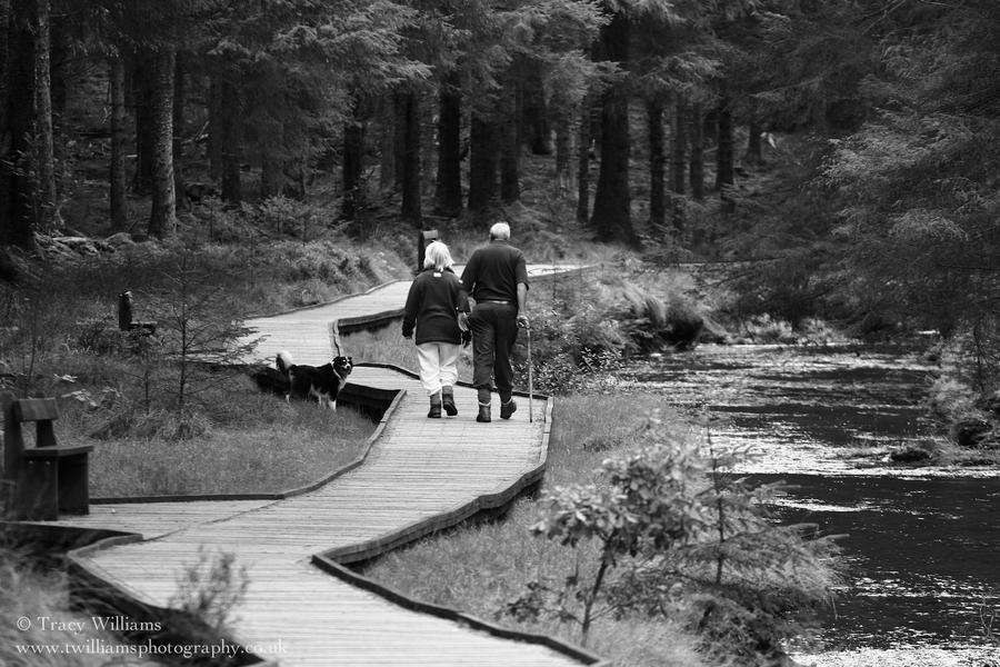 Elderly Couple Walking Dog by twilliamsphotography on ...