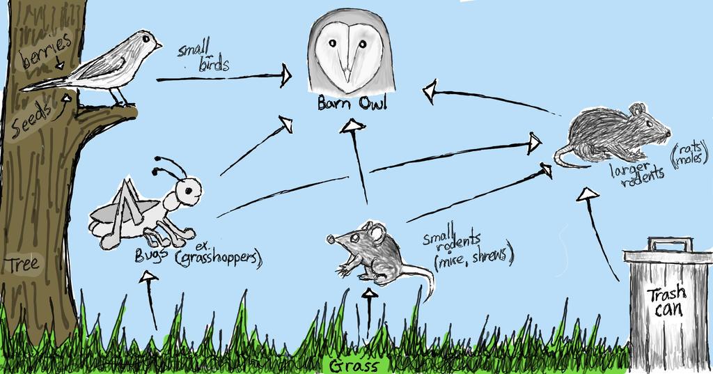 Owl food chain digital by art3mis x on deviantart for Food bar owl