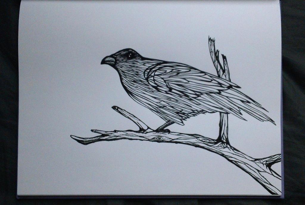 Bird by Art3mis-X