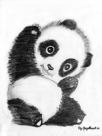 My baby Panda by angelheart05