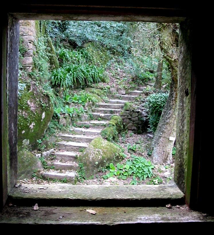 Escada sem corrimao by bibliofila