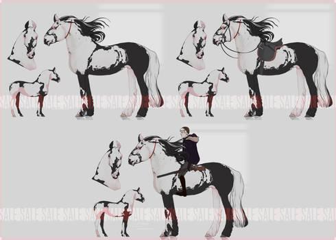 HORSE ADOPT AUCTION [CLOSED]