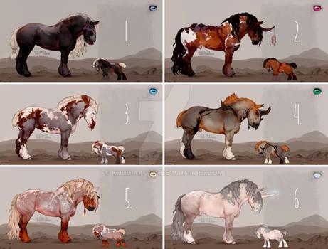 HORSE-ADOPT AUCTION [CLOSED]