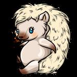Kittee Hog