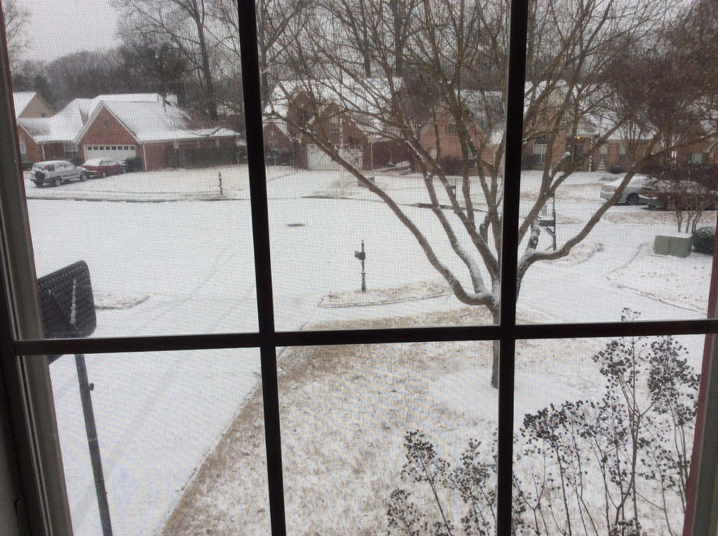 Snow of January 6,  2017 by PikachuJenn