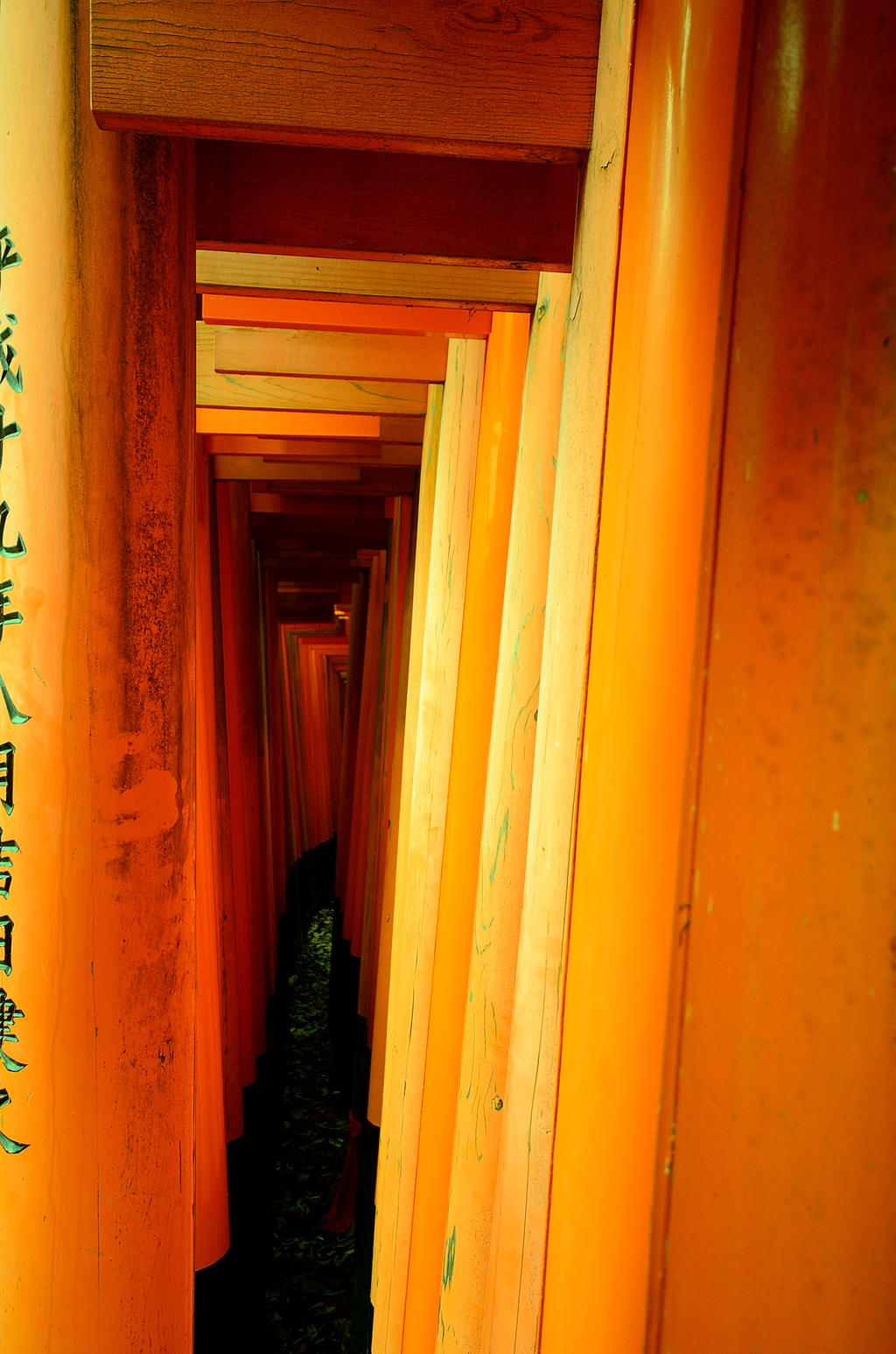 Fushimi Inari torii inbetween by OcioProduction