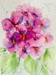 Abstract Bouquet of Purple African Violets
