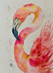 A Flamingo #3
