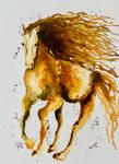 A Wild Horse #2